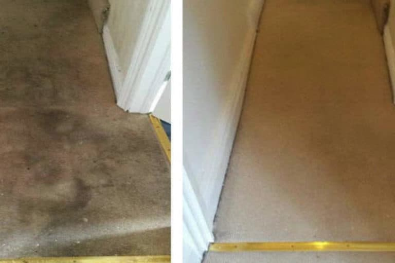 Carpet & Rug Steam Cleaning