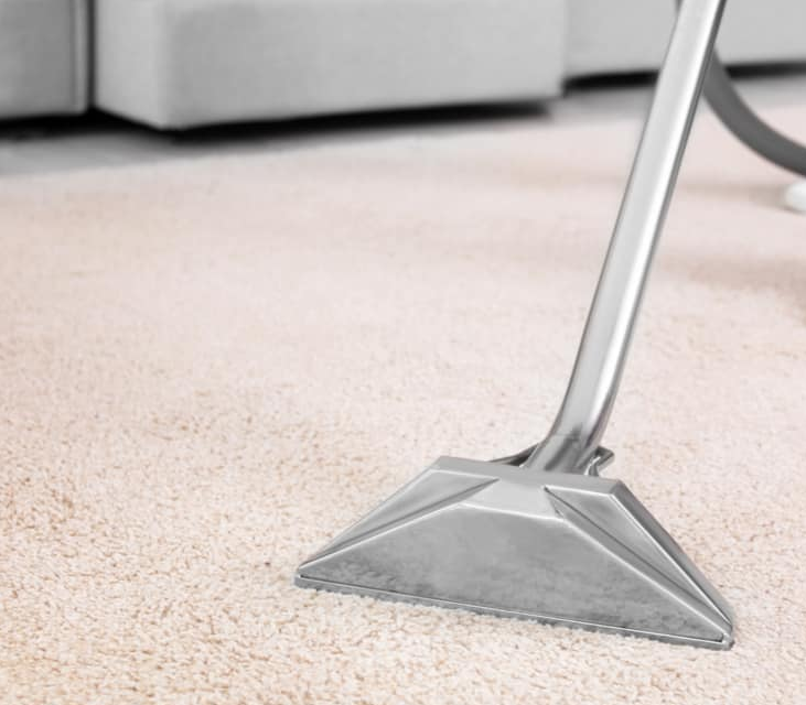carpet cleaning,